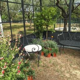 Life in Rome – Festival del Verde e Paesaggio