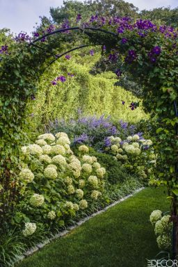 Rhapsody in Green – Ina Garten's Garden